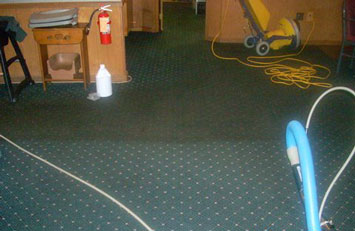 Merles Steam Clean - Half Clean Commercial Carpet