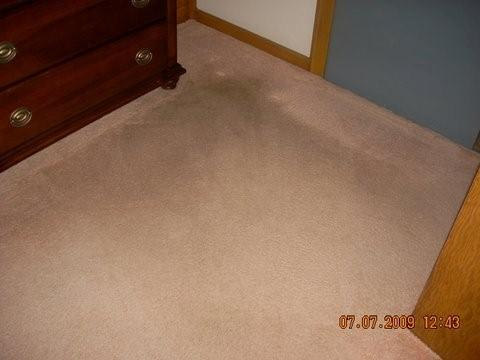 Merles Steam Clean - Carpet Before Cleaning
