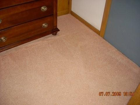 Merles Steam Clean - Carpet After Cleaning
